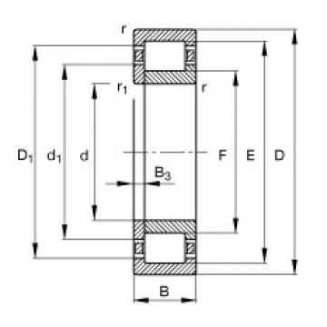 Cylindrical Roller Bearings Distributior NUP206-E-TVP2 FAG