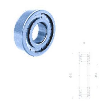 Cylindrical Roller Bearings Distributior NUP206FM Fersa