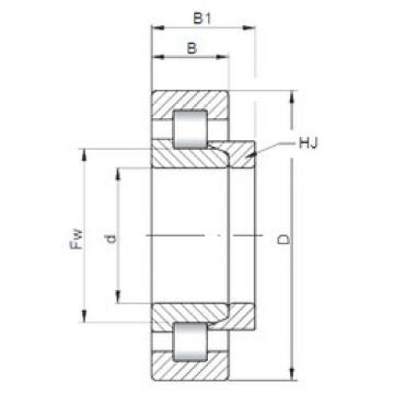 Cylindrical Bearing NH312 ISO