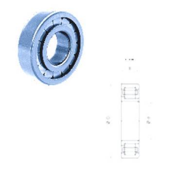 Cylindrical Bearing NJ405F Fersa