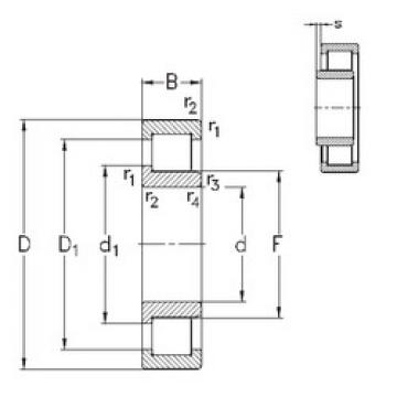 Cylindrical Bearing NJ252-E-MA6 NKE