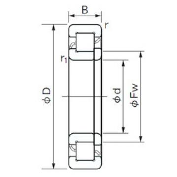Cylindrical Roller Bearings Distributior NUP 407 NACHI