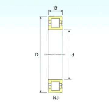 Cylindrical Roller Bearings Distributior NUP 244 ISB
