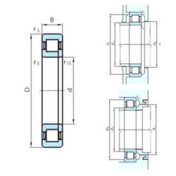 Cylindrical Roller Bearings Distributior NUP1052 PSL