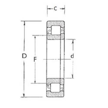 Cylindrical Roller Bearings Distributior NUP208 FBJ