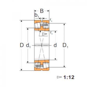 Spherical Roller Bearings 22232 ACKMW33 MPZ