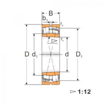 Spherical Roller Bearings 22232 KW33 MPZ