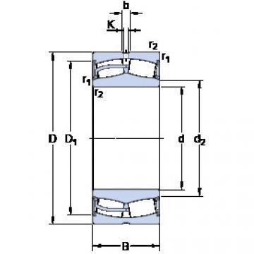 Spherical Roller Bearings 22232-2CS5/VT143 SKF