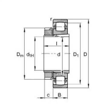 Spherical Roller Bearings 20211-K-TVP-C3 + H211 FAG