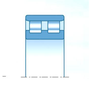 Cylindrical Bearing NN4968KD1C0NAP5 NTN