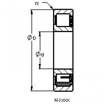 Cylindrical Bearing NJ311 EMA AST