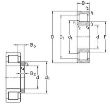Cylindrical Bearing NJ264-E-M6+HJ264 NKE