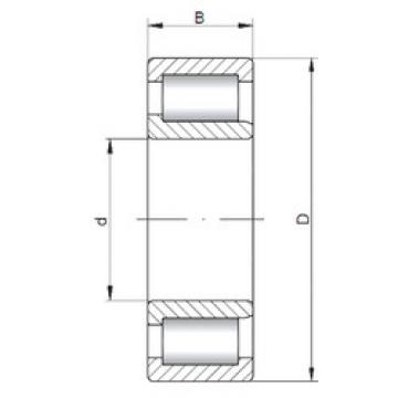 Cylindrical Bearing NJF2307 V CX