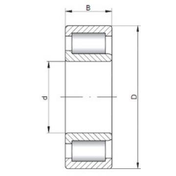 Cylindrical Bearing NJF2309 V CX