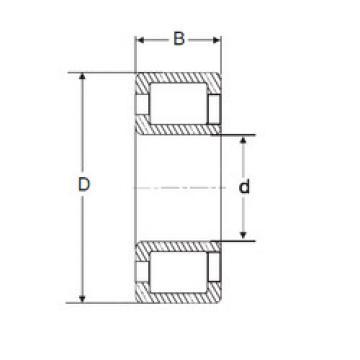 Cylindrical Bearing NJG 2319 VH SIGMA