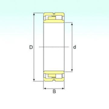 Cylindrical Bearing NN 48/750 H1W33 ISB