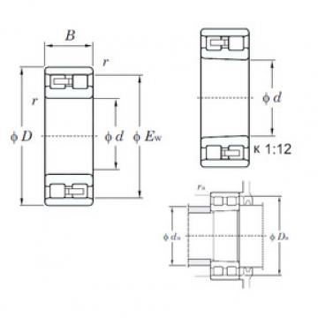 Cylindrical Bearing NN3005 KOYO