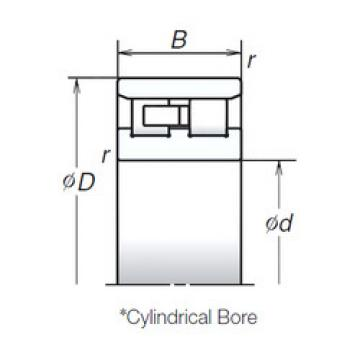Cylindrical Bearing NN3007ZTB NSK
