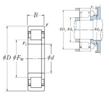 Cylindrical Roller Bearings Distributior NUP 317 NSK