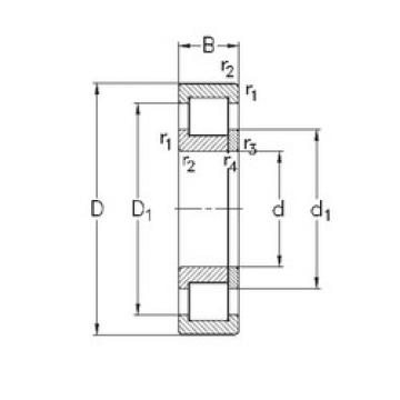Cylindrical Roller Bearings Distributior NUP214-E-M6 NKE