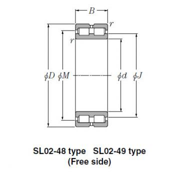 SL Type Cylindrical Roller Bearings NTN SL02-4844