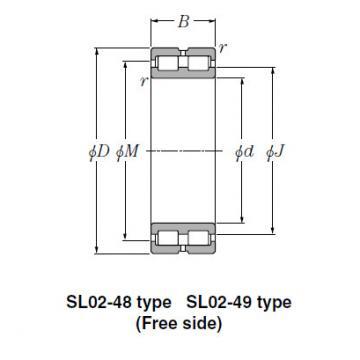 SL Type Cylindrical Roller Bearings NTN SL02-4956